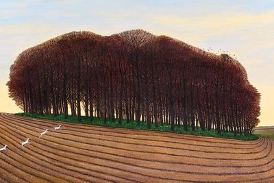 Dorset Clump of Trees, 2012