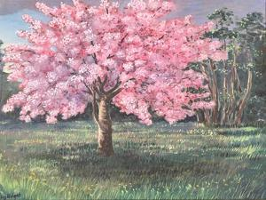 Pink Blossom, 1994 by Liz Wright