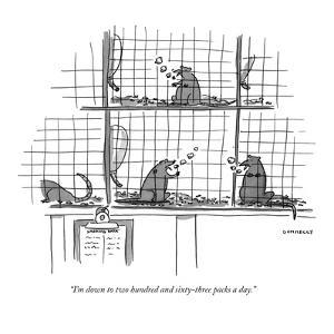 """""""I'm down to two hundred and sixty-three packs a day."""" - New Yorker Cartoon by Liza Donnelly"""