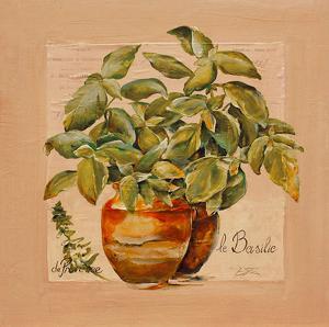 Basilic pot by Lizie