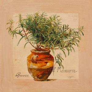 Rosemary pot by Lizie