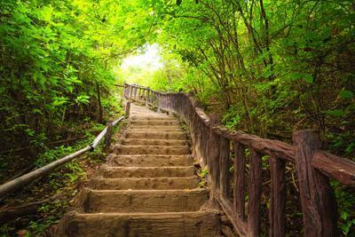 Stairway to Forest, Erawan National Park,Kanchanburi,Thailand