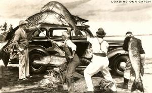 Loading Giant Fish on Car