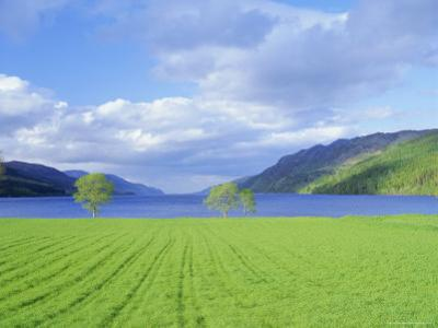 Loch Ness from the Western End, Highlands Region, Scotland, UK, Europe by I Vanderharst