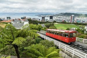 A cable car heads up the funicular railway high above Wellington, the capital city, New Zealand by Logan Brown