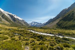 A glacier fed creek cuts through a green valley high in the mountains, South Island, New Zealand by Logan Brown
