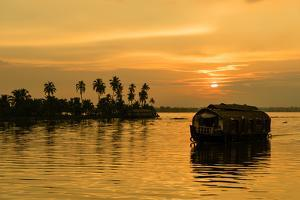 A traditional houseboat moves past the setting sun on the Kerala Backwaters, Kerala, India, Asia by Logan Brown