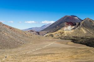 Trail hikers and Mount Ngauruhoe, Tongariro Nat'l Park, UNESCO World Heritage, New Zealand by Logan Brown