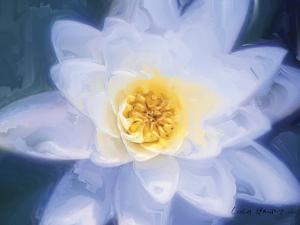 Painterly Flower III by Lola Henry