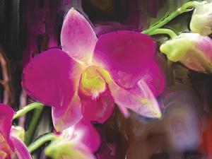 Painterly Flower V by Lola Henry