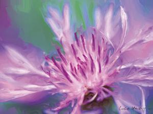 Painterly Flower VIII by Lola Henry