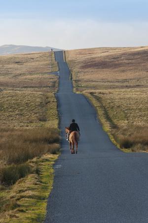https://imgc.allpostersimages.com/img/posters/lone-hunter-caldbeck-fell-road-back-o-skiddaw-cumbria-england-united-kingdom-europe_u-L-PQ8NSN0.jpg?p=0