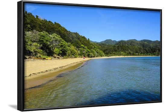 Long Sandy Beach, Abel Tasman National Park, South Island, New Zealand, Pacific-Michael-Framed Photographic Print
