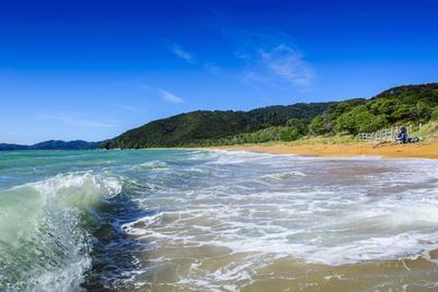 https://imgc.allpostersimages.com/img/posters/long-sandy-beach-abel-tasman-national-park-south-island-new-zealand-pacific_u-L-PQ8S6B0.jpg?artPerspective=n