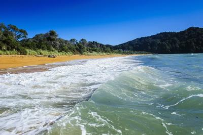 https://imgc.allpostersimages.com/img/posters/long-sandy-beach-abel-tasman-national-park-south-island-new-zealand-pacific_u-L-PQ8S6N0.jpg?artPerspective=n