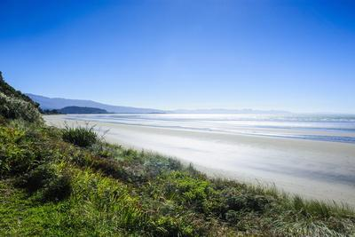 https://imgc.allpostersimages.com/img/posters/long-sandy-beach-abel-tasman-national-park-south-island-new-zealand-pacific_u-L-PQ8STN0.jpg?p=0