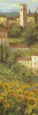 Provencal Village IV - Focus by Longo