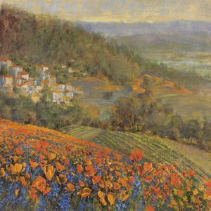 Provencal Village IX by Longo