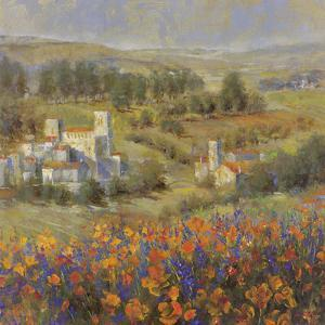 Provencal Village VII by Longo