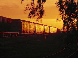 Freight Train at Sunset by Lonnie Duka