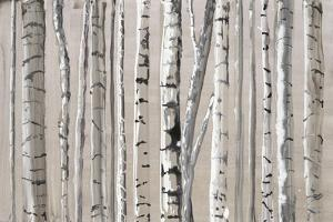 West Coast Birch by Lora Gold