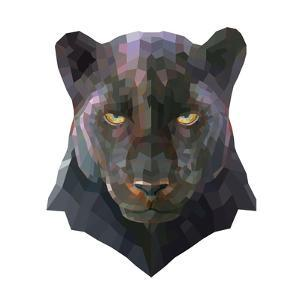 Panther by Lora Kroll