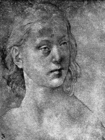 The Head of a Young Woman, 15th or 16th Century