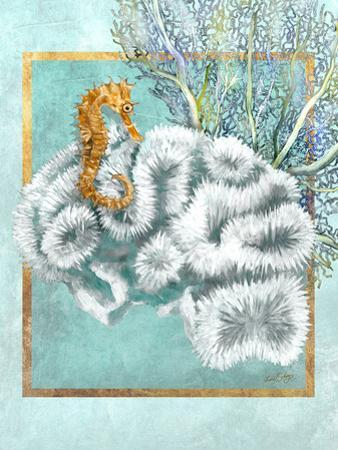 Coral and Seahorse