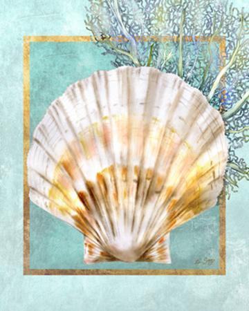 Scallop Shell and Coral by Lori Schory