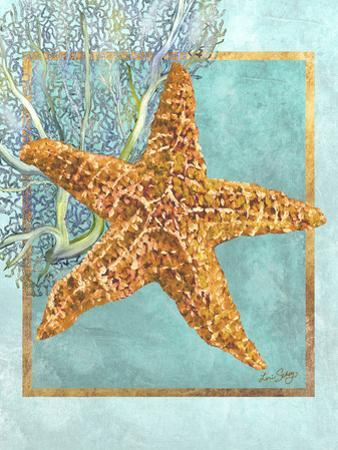 Starfish and Coral