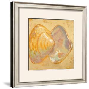 Shoreline Shells II by Lorraine Vail