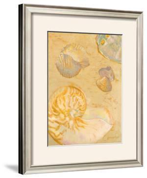 Shoreline Shells VI by Lorraine Vail