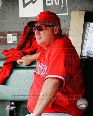 Los Angeles Angels - Mike Scioscia Photo
