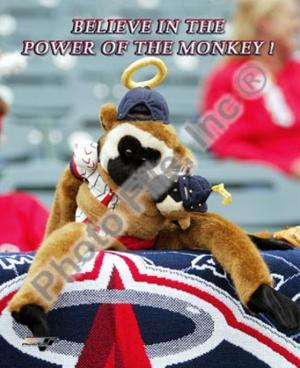 Los Angeles Angels - Rally Monkey Photo