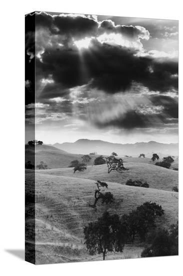 Los Olivo, California--Stretched Canvas Print