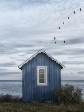 Beach Hut by Lotte Gronkjar