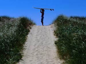 Surfer Carrying Board on Dunes at Long Point, Martha's Vineyard, Massachusetts, USA by Lou Jones