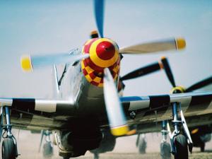 """WWII Aeroplane, """"War Birds"""" Air Show, Oshkosh, U.S.A. by Lou Jones"""
