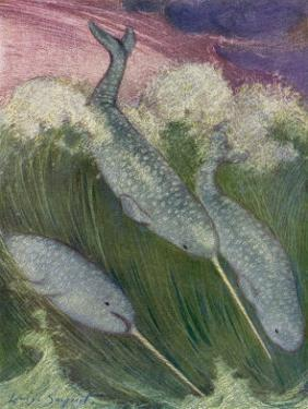 Narwhals Swimming by Louis A. Sargent