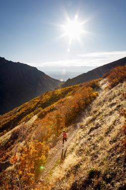 A Young Woman Goes for a Fall Run Along the Pipeline Trail, Millcreek Canyon, Salt Lake City, Utah by Louis Arevalo