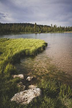Duck Creek Pond, Dixie National Forest, Utah by Louis Arevalo
