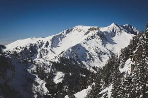 Mary Ellen Gulch Is Located Adjacent To Snowbird's Mineral Basin, Wasatch Mountains, Utah by Louis Arevalo