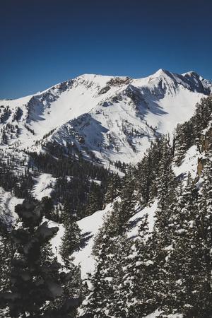 Mary Ellen Gulch Is Located Adjacent To Snowbird's Mineral Basin, Wasatch Mountains, Utah