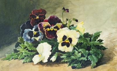 Winter Pansies, 1884 by Louis Bombled