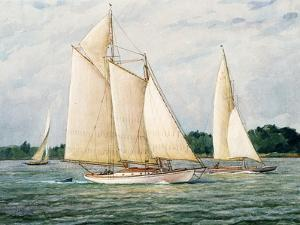 Unidentified Sloops and Schooner Yacht by Louis Feuchter