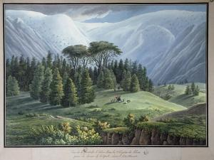 View of the Cedar Forests of Lebanon Seen from the Tripoli Road, C.1800 by Louis-Francois Cassas