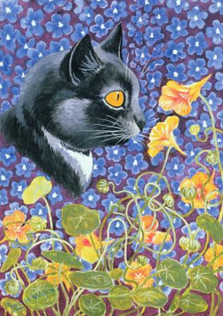 A Cat in a Sea of Flowers