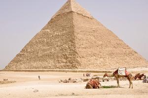 Life around the Great Pyramid by Louise Bleakly