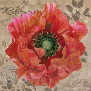 Poppy Swirl V by Louise Montillio