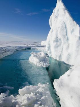 During the Arctic Spring by Louise Murray